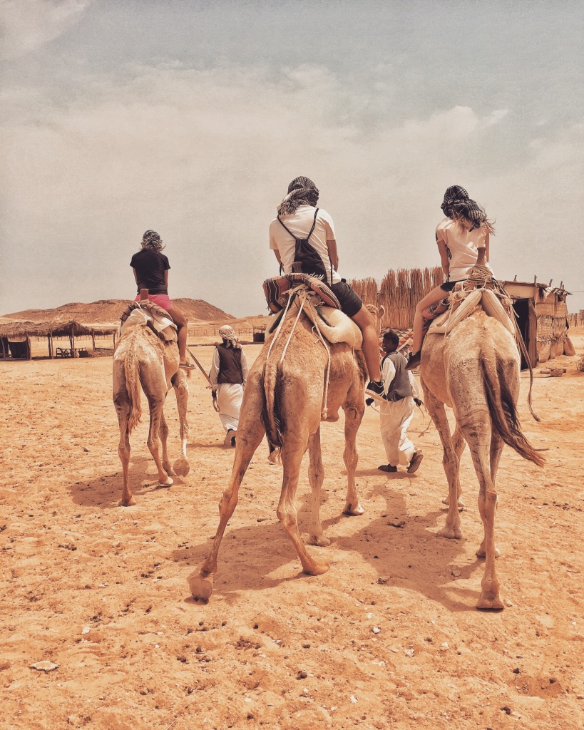 Marsa Alam safari wielbłądy